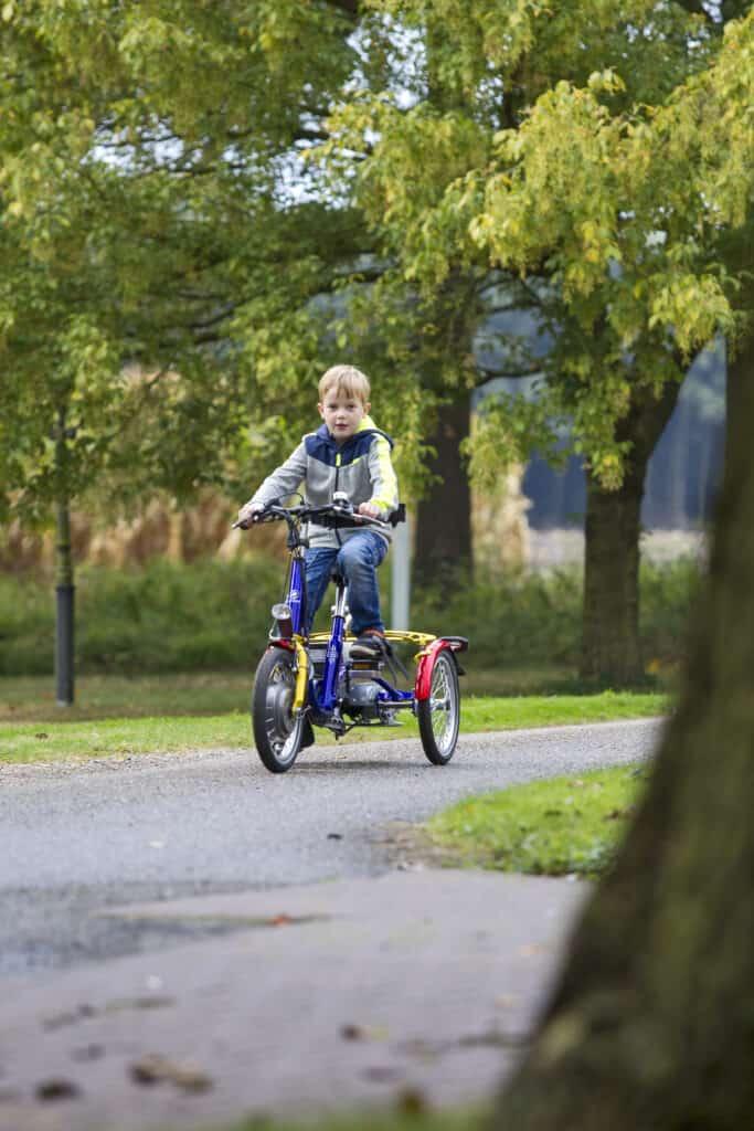 Kinderdriewielfiets Mini - Van Raam (4)