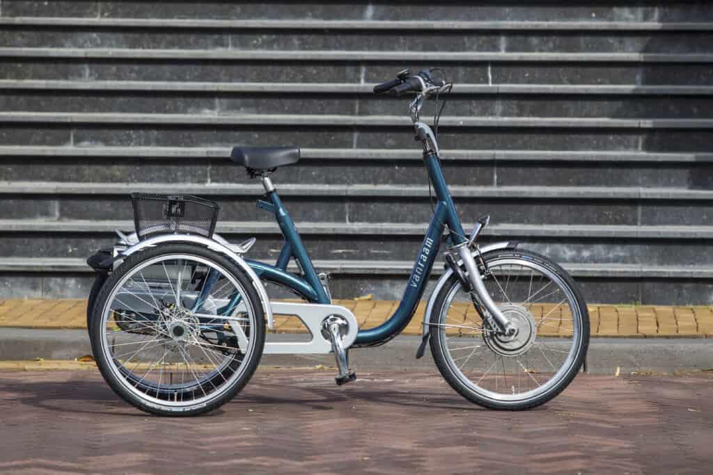 Maxi driewieler - Van Raam (5)